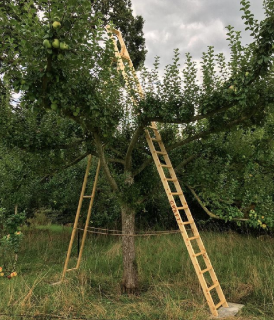 Graft Ladder by Jo Lathwood, part of Open-Up for Hestercombe Gallery
