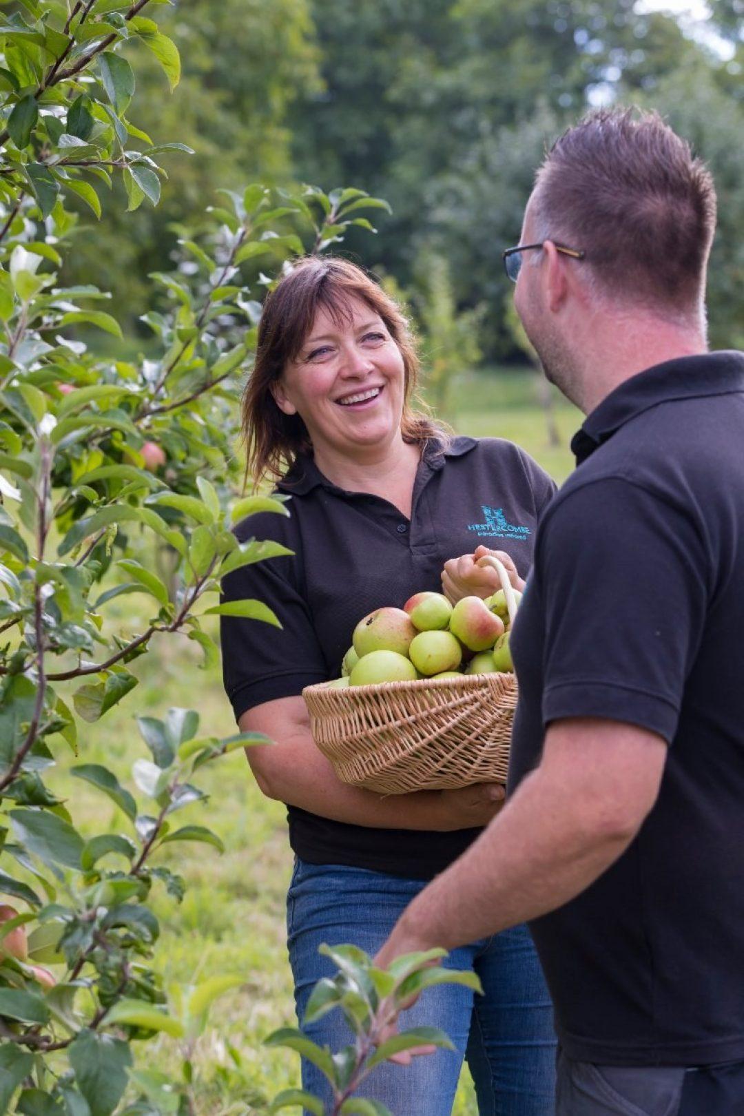 Apple pruning hestercombe blog T4 I1752 1
