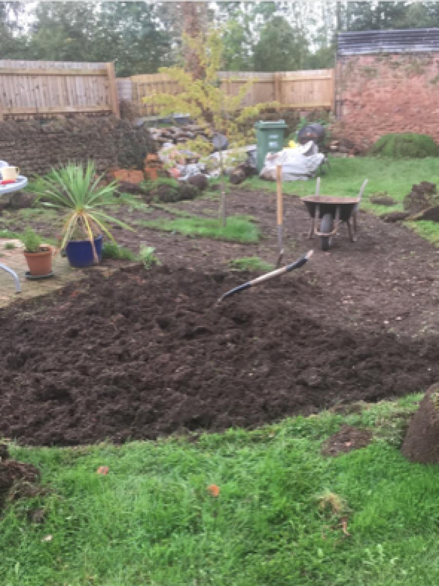 flower beds at Chateau Greenslade - Gardener Blogs: Starting New Flower Beds
