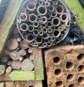 A bug hotel at Hestercombe