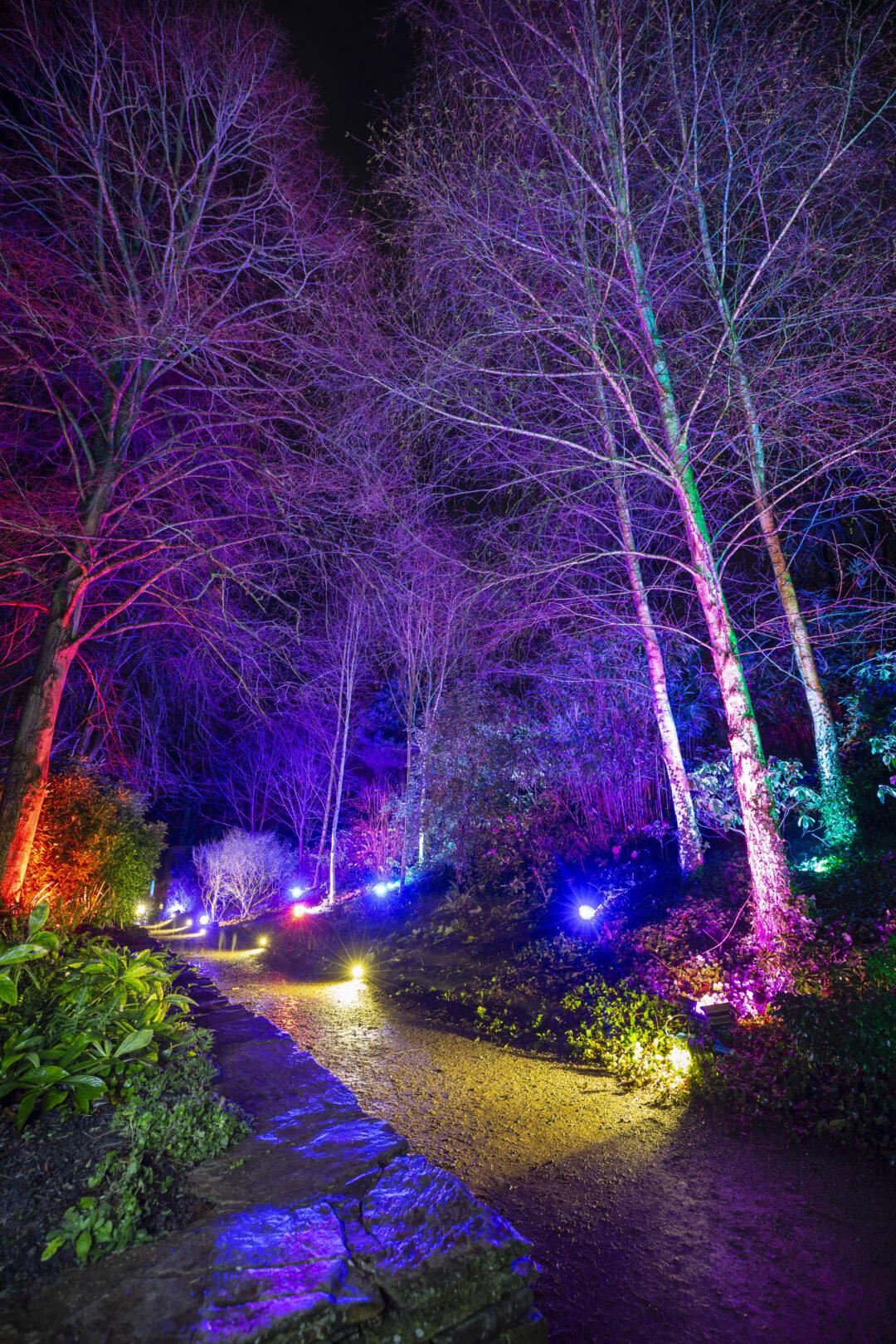 Christmas at Hestercombe 2021
