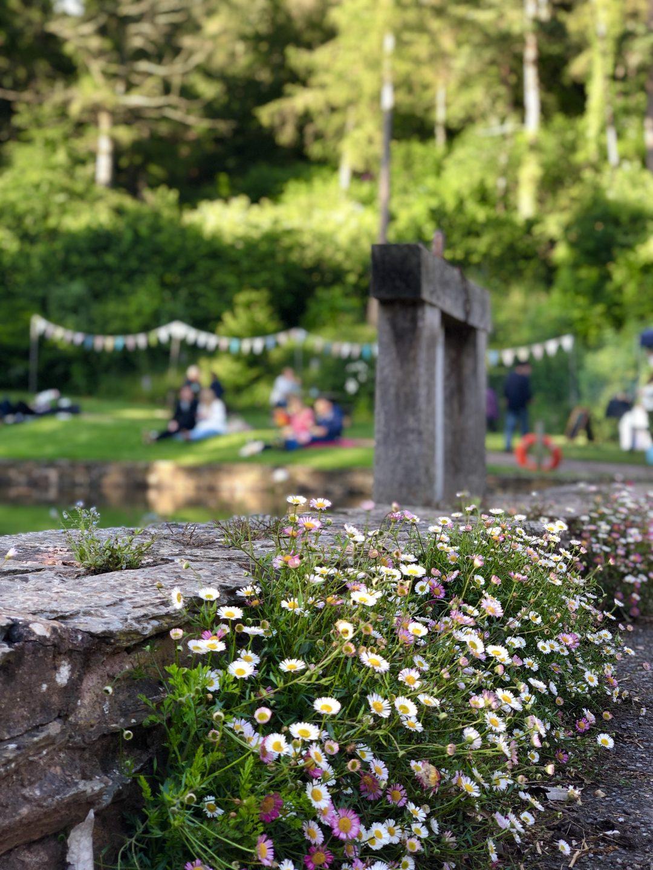 Summer Late Openings at Hestercombe Gardens near Taunton
