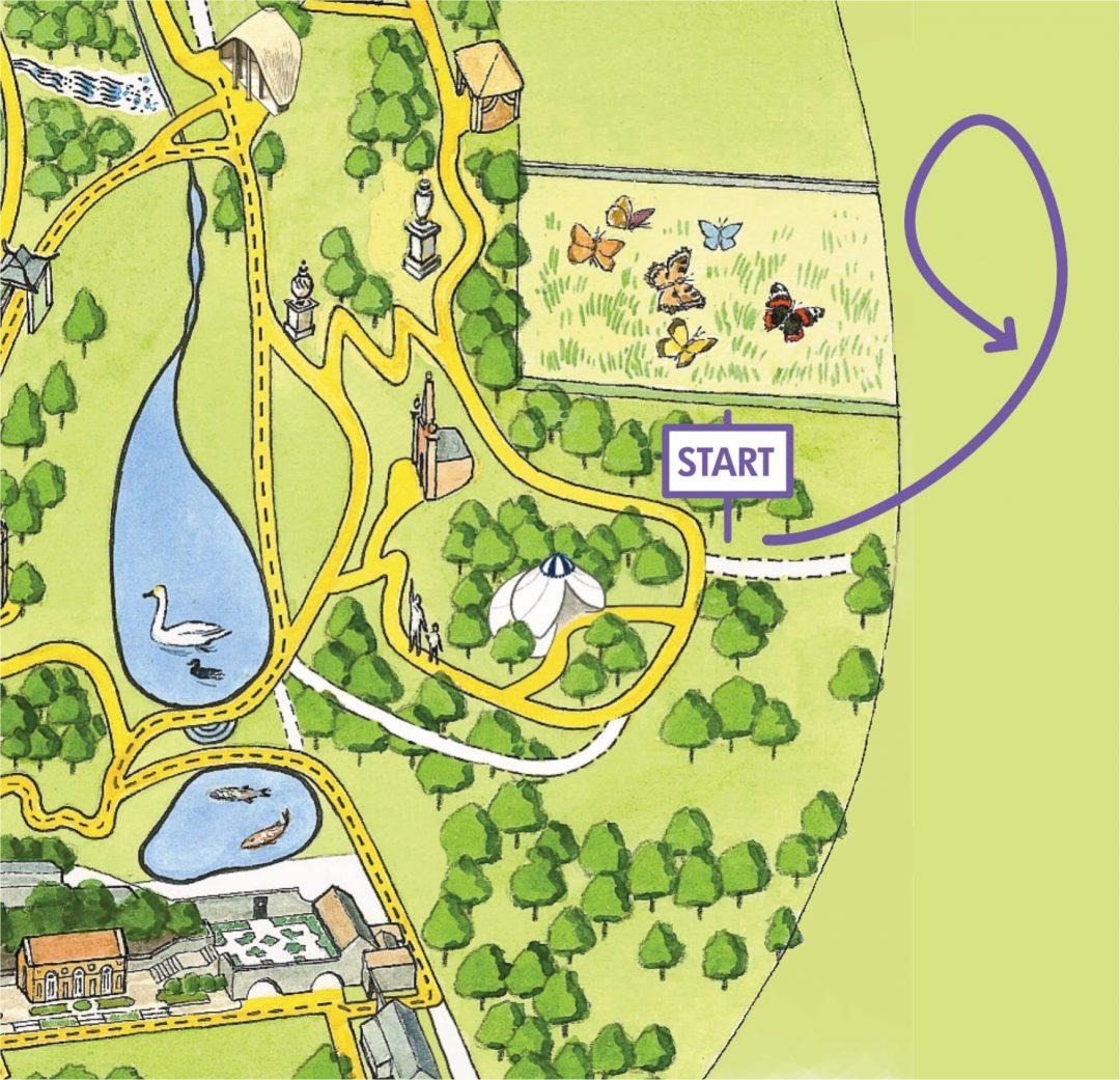 Bluebell Walk Map
