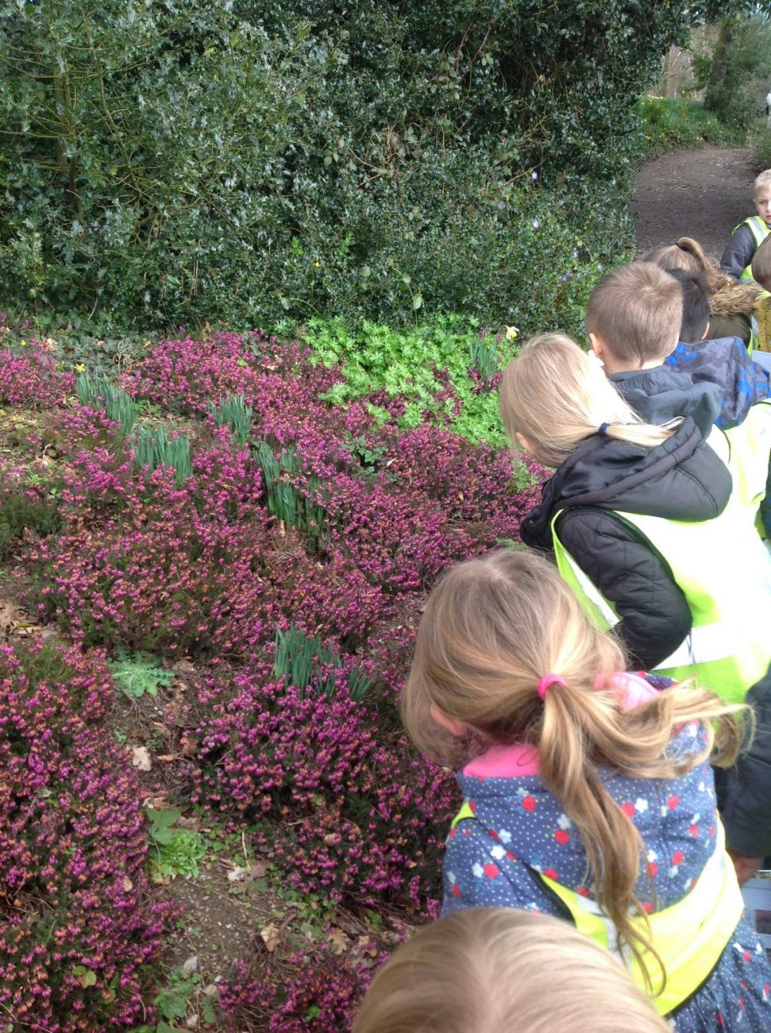 Eastover Primary School education learning at Hestercombe 2