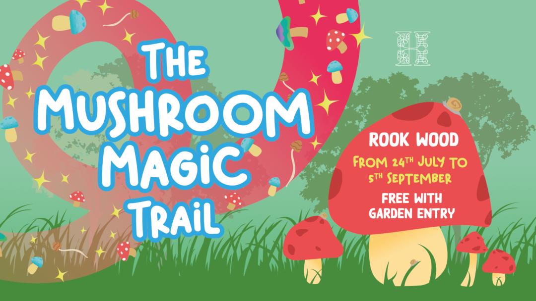 Mushroom Magic Trail 1920x1080