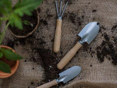 Generic gardening image